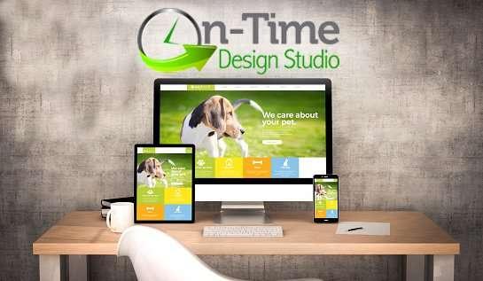 web design in Horizon West
